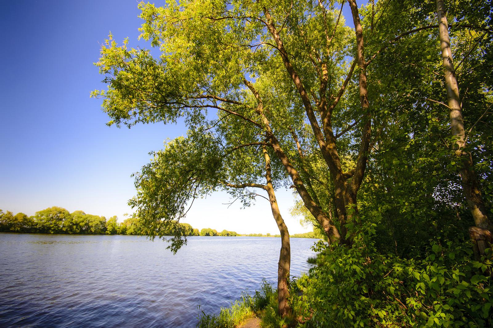"Москва-река недалеко от КП ""Морозово Лайф"""