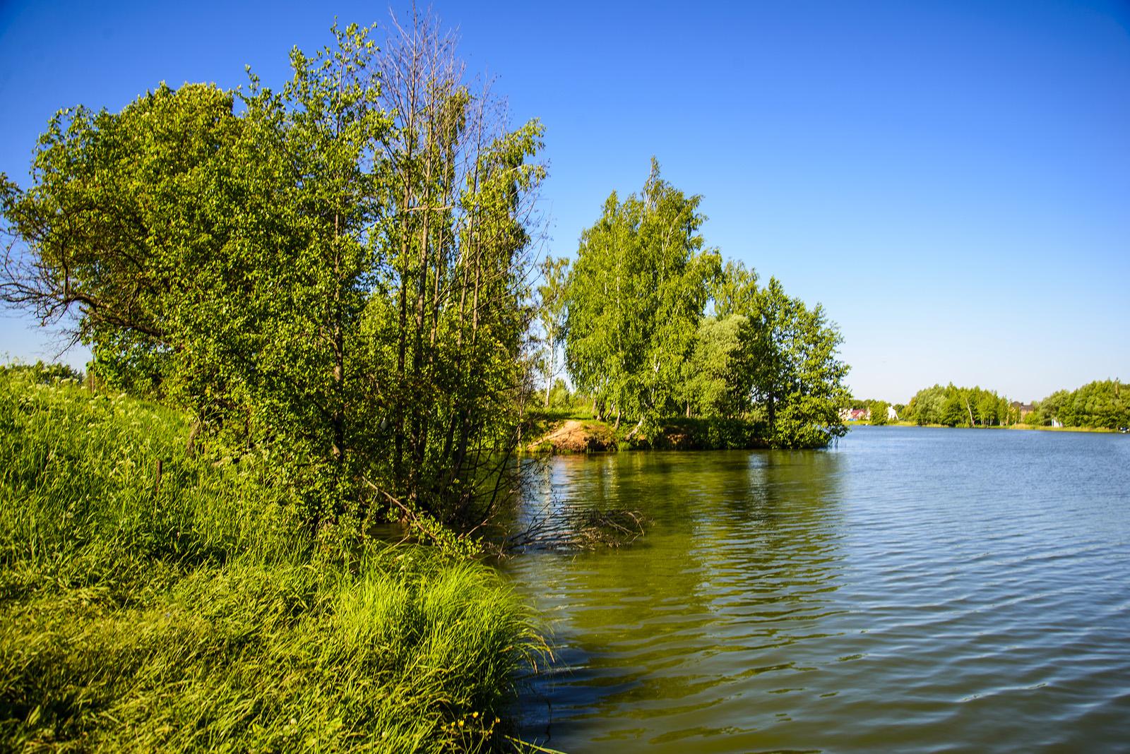 Река в Першино